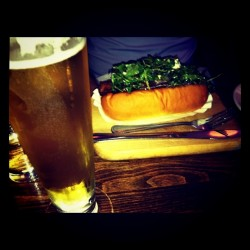 gourmet hot dog and beer at Senate
